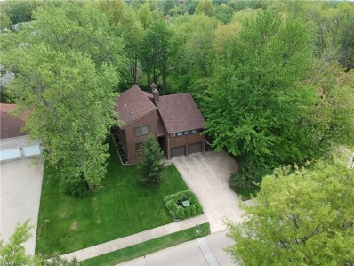 6486 Woodhawk Dr, Mayfield Heights, OH 44124 - MLS#: 3998808