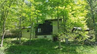 4980 W Oil Springs Rd, McConnelsville, OH 43756 - MLS#: 3998908