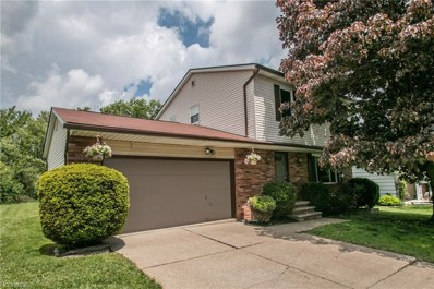 5501 Broadmill Dr, Broadview Heights, OH 44147 - MLS#: 3999106