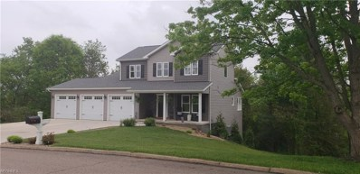 132 Dolly Dr, Cambridge, OH 43725 - MLS#: 3999346