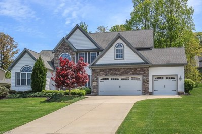 8101 Rainbow Dr, Concord, OH 44077 - MLS#: 3999662