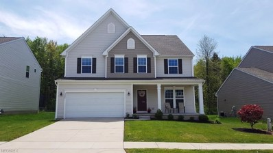 3306 Shale Dr, Twinsburg, OH 44087 - MLS#: 3999968