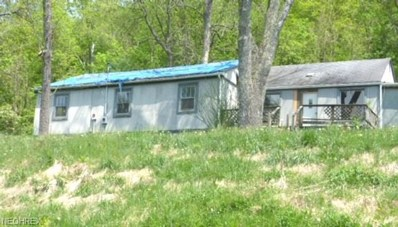 6580 N State Route 60 NORTHWEST, McConnelsville, OH 43756 - MLS#: 4000366