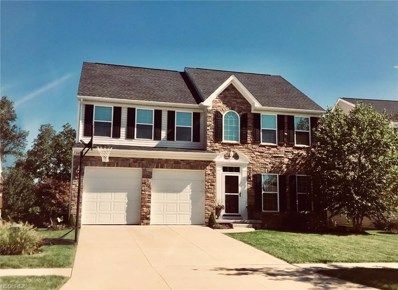 240 Brixton Way, Wadsworth, OH 44281 - MLS#: 4000438