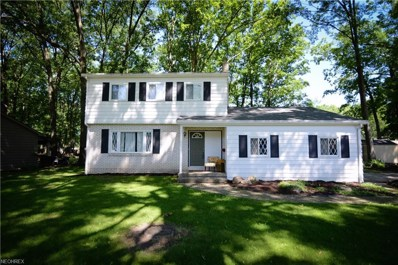 236 Bradford Dr, Canfield, OH 44406 - MLS#: 4000498