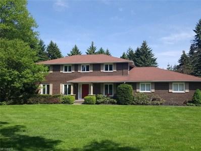 801 Sun Ridge Ln, Chagrin Falls, OH 44022 - MLS#: 4000737