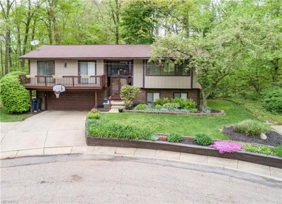 785 Marmont Dr, Akron, OH 44313 - MLS#: 4000880