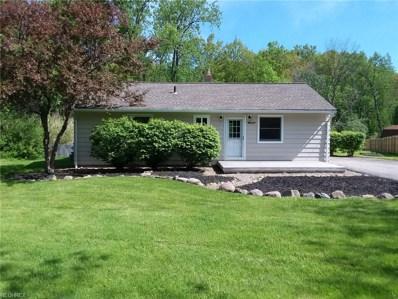 10337 Prouty Rd, Concord, OH 44077 - MLS#: 4001058