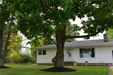 6025 Branch Rd, Medina, OH 44256 - MLS#: 4001115