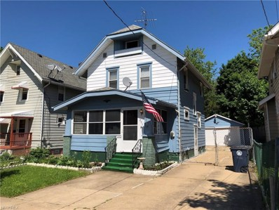 295 Cleveland St, Akron, OH 44306 - MLS#: 4001182