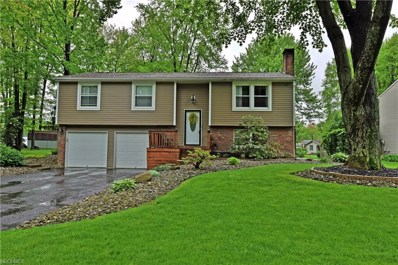 300 Stahl Ave, Cortland, OH 44410 - MLS#: 4001191