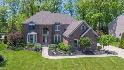 364 Harbor Ct, Avon Lake, OH 44012 - MLS#: 4001220