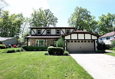 5348 Birch St, North Ridgeville, OH 44039 - MLS#: 4001337
