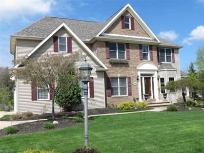 9562 Amberwood Ct, Broadview Heights, OH 44147 - MLS#: 4001544