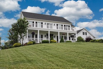 13131 Blue Ridge Rd, Newcomerstown, OH 43832 - MLS#: 4001679