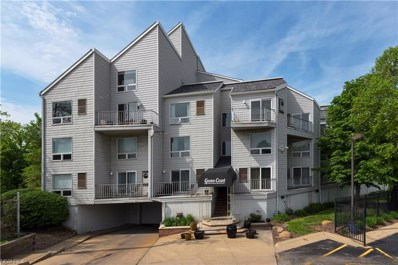 1900 Grove Ct UNIT 112, Cleveland, OH 44113 - MLS#: 4001706