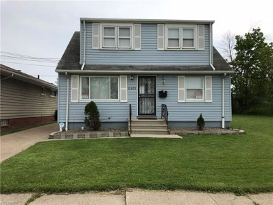 12203 Hirst Ave, Cleveland, OH 44135 - MLS#: 4001975
