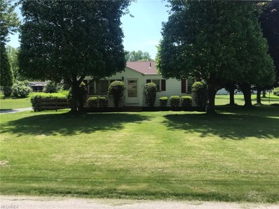 36 Ward Ave, New Middletown, OH 44442 - MLS#: 4002051