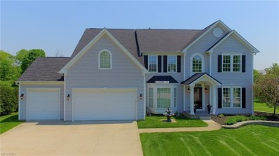 2815 Sweet Flag Way, Stow, OH 44224 - MLS#: 4002339