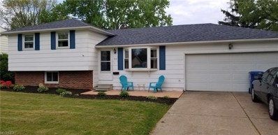 709 W Martin Ave, Amherst, OH 44001 - MLS#: 4002465