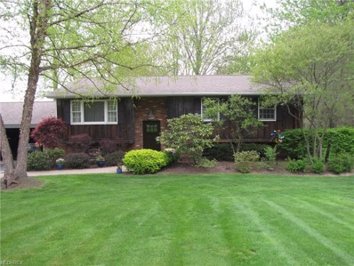 3632 Youngstown Kingsville, Cortland, OH 44410 - MLS#: 4002585