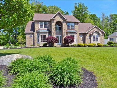 7959 Butler Hill Dr, Concord, OH 44077 - MLS#: 4003040