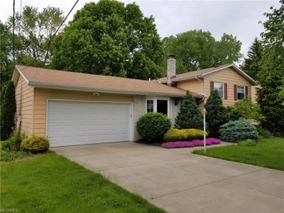 2521 Ashdale Dr, Twinsburg, OH 44087 - MLS#: 4003104