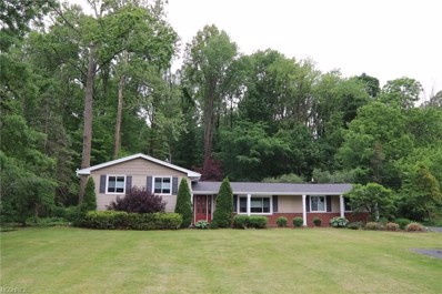 10920 Valley View Rd, Sagamore Hills, OH 44067 - MLS#: 4003671
