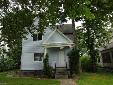 1143 W 9th St, Lorain, OH 44052 - MLS#: 4003941
