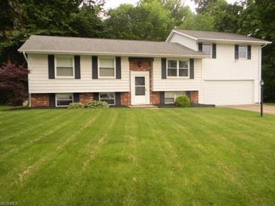 2809 Federal Ave, Alliance, OH 44601 - MLS#: 4004030