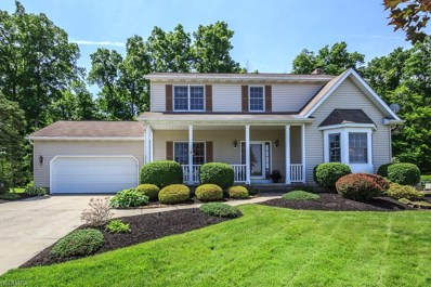 10480 Barchester Dr, Concord, OH 44077 - MLS#: 4004065