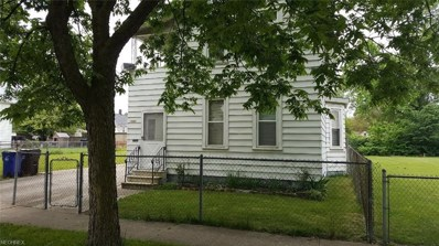1080 E 67th St, Cleveland, OH 44103 - MLS#: 4004067