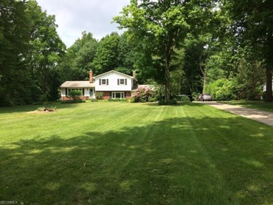 11894 Caves Rd, Chesterland, OH 44026 - MLS#: 4004410