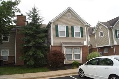 3398 Lenox Village Dr UNIT 237, Fairlawn, OH 44333 - MLS#: 4004493