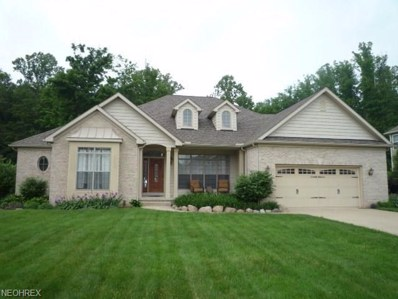 12355 Summerwood Dr, Concord, OH 44077 - MLS#: 4004584