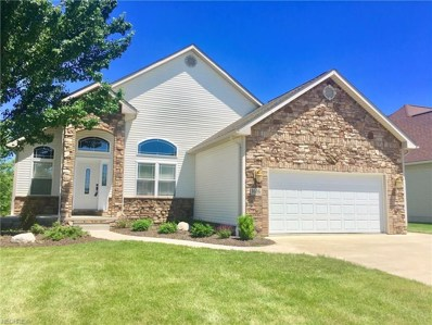 1616 Firethorn Ln, Wooster, OH 44691 - MLS#: 4004693