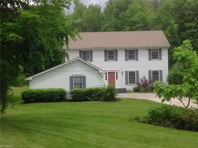 8952 Old Meadow Dr, Chagrin Falls, OH 44023 - MLS#: 4004795