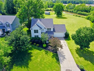 4110 Scotch Pine Ct, Perry, OH 44081 - MLS#: 4004911
