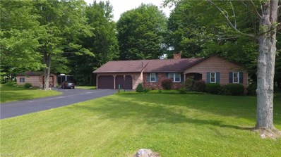 4946 Shanks Phalanx Rd, Southington, OH 44470 - MLS#: 4005282