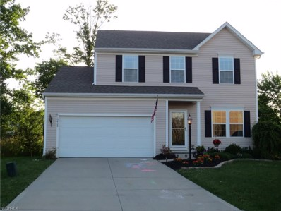 10428 Joyce Ct, Reminderville, OH 44202 - MLS#: 4005339