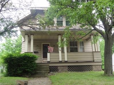 522 Sumatra Ave, Akron, OH 44305 - MLS#: 4005560