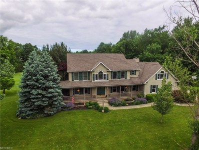 5055 Turnbury Dr, Perry, OH 44057 - MLS#: 4005731