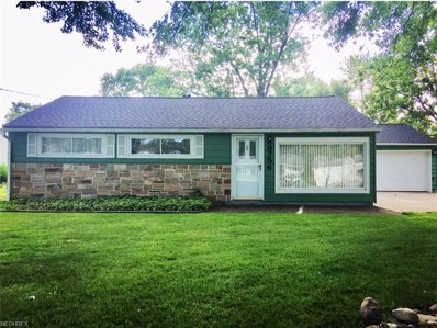 9754 E Idlewood Dr, Twinsburg, OH 44087 - MLS#: 4005958