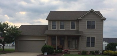 10525 Carrousel Woods Dr, New Middletown, OH 44442 - MLS#: 4006198