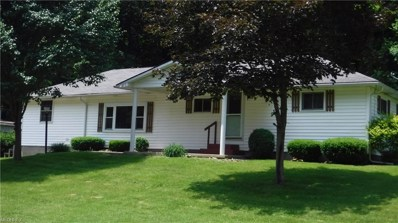 46370 County Road 501, Coshocton, OH 43812 - MLS#: 4006286