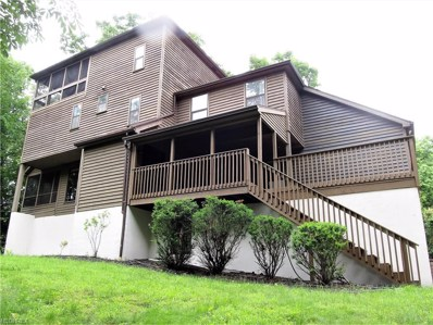 407 Terrace Harbor, Washington, WV 26181 - MLS#: 4006347