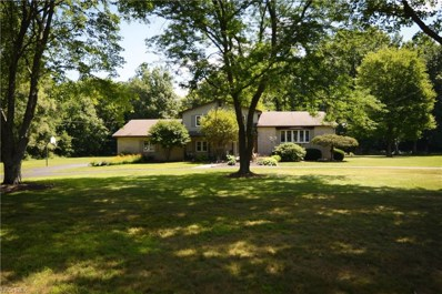 851 Bedford Rd, Lowellville, OH 44436 - MLS#: 4006372