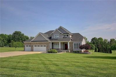 2436 Reimer Rd, Wadsworth, OH 44281 - MLS#: 4006495