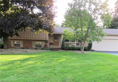 170 Frostwood Dr, Cortland, OH 44410 - MLS#: 4006939