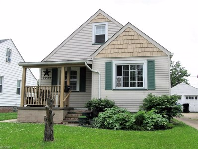 13505 Harold Ave, Cleveland, OH 44135 - MLS#: 4008057
